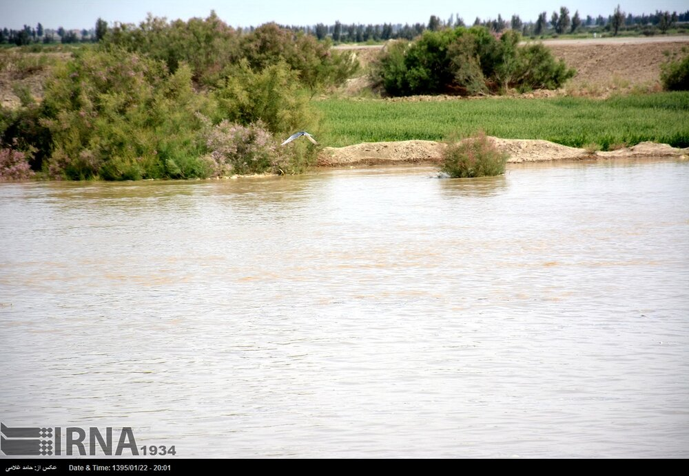 After deluge Helmand River springs back to life