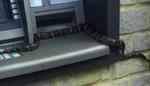 بھارت میں اے ٹی ایم مشین سے سانپ برآمد