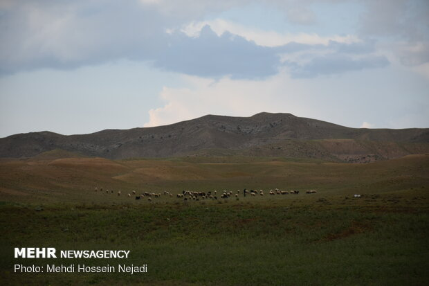 Beauties of Mugan plain