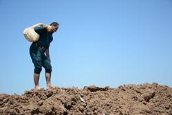 ۱۹ کیلومتر سیل بند در دشت آزادگان به ترمیم نیاز دارد