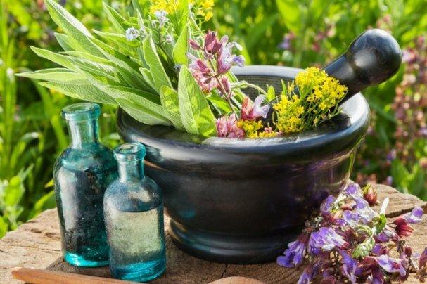 حمایت از ۴۸ طرح توسعه کشت و فرآوری اولیه گیاهان دارویی