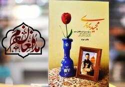 جشن ۲۰هزار تایی شدن «مجید بربری»، زندگی شهید مجید قربانخانی