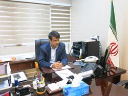 خرید تضمینی ۶۲ هزار تن کلزا در گلستان/ بازرسیها افزایش یافت