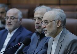 صالحي: المنجزات النووية تجسّد اقتدار الجمهورية الاسلامية
