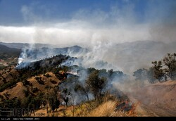 Wildfire in forests in Marivan, western province of Kordestan, in August 2015