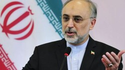 Salehi says Iran will overcome the difficult time