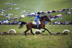 Iran's Azerbaijan nomadic cultural festival
