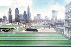 تولید صفحه خورشیدی زیستی برای تصفیه هوا در لندن