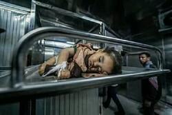 غزہ میں اسرائیلی بربریت میں 14 مہینے کی بچی شہید