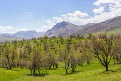"""İran'da """"Kavand"""" köyü ziyaretçileri bekliyor"""