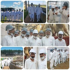 Leader's representative visits slaughterhouse in Brazil