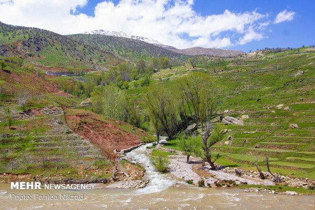 İran'dan bahar manzaraları