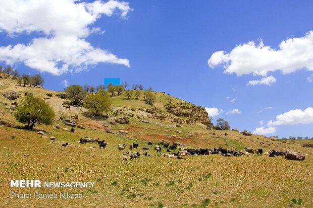 Beauties of Kavand-e Darvishan