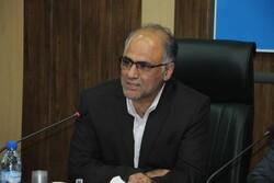 مبارزه با ملخها در ۱۳ هزار هکتار از اراضی استان بوشهر انجام شد