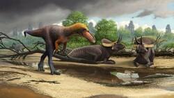 فسیل همخانواده «تیرانوسوروس» غول پیکر کشف شد