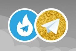 هاتگرام و طلاگرام به زودی مستقل میشوند/ وزارت ارتباطات سِروری برای هاتگرام نخرید