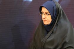 فرهنگسراهای محلات در شهر زنجان  راه اندازی می شود