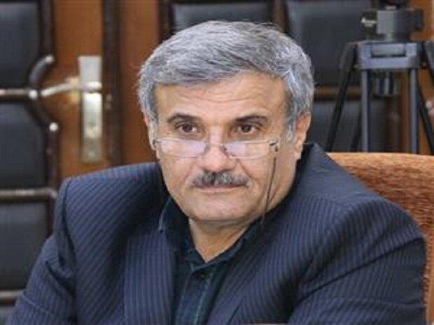 مرغداران کردستان مکلف به تحویل مرغ با قیمت تنظیم بازار هستند