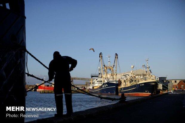 نگرانی ماهیگیران دانمارکی از آینده برگزیت