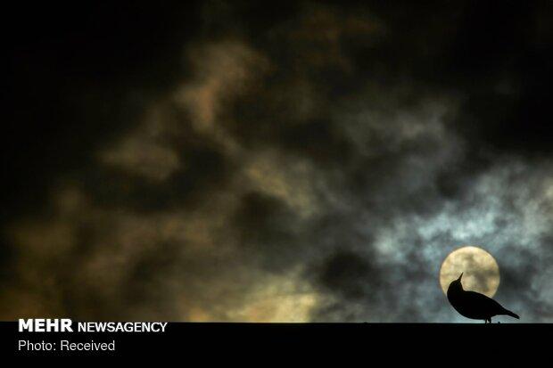 برندگان مسابقه عکاسی جی دی تی