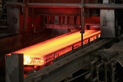 Official urges modifying internal bylaws to counter sanctions on steel exports