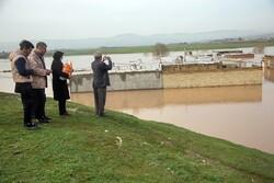 ساخت بیش از ۵۰۰۰ واحد مسکونی در بستر رودخانههای کرمانشاه