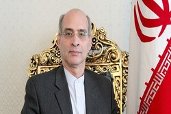 Iran's envoy to Netherlands appointed as OPCW executive council deputy
