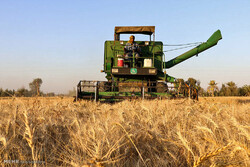 Iran signs MOU with Russia, Kyrgyzstan for transient imports of wheat