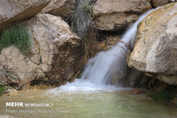 Springtime beauty of Dasht-e Arzhan in Shiraz
