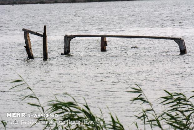 کشتی های به گل نشسته و از کار افتاده در اروند رود