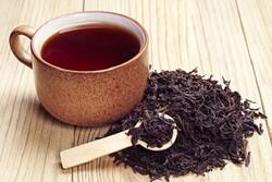 تولید بیش از ۲۰ هزار تن چای خشک در کشور
