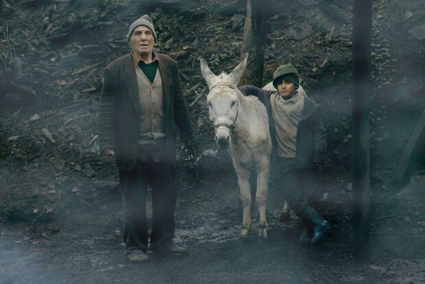 'Cinema Donkey' accepted into Cannes film market