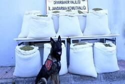 همکاری ایران و گرجستان در مبارزه با موادمخدر