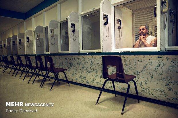 برندگان مسابقه عکس خبری انگلیس