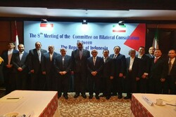 Iran, Indonesia talk US unilateralism at consultation cmte. meeting