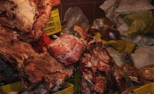 کشف ۱.۵ تن فرآورده گوشتی غیرمجاز از یک کارخانه