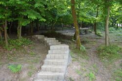 پارک جنگلی چهار هکتاری در طالقان ایجاد میشود