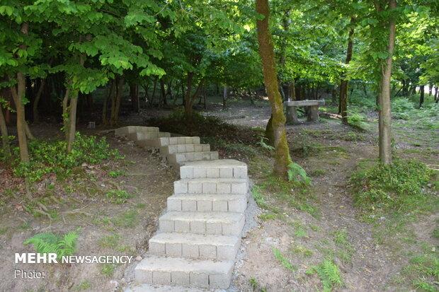 """متنزه الغابة """"بي بي يانلو"""" في شمال ايران"""