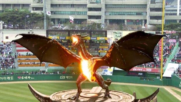 فیلمی از حضور اژدها در ورزشگاهی در کره جنوبی!