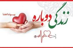 اهدای عضو ۳۶ بیمار مرگ مغزی در کاشان/کلیه بیشترین عضو اهدایی بیماران