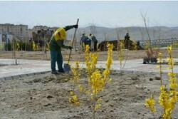 احداث ۳۰ هزار متر مربع فضای سبز در شهرک گلستان بجنورد
