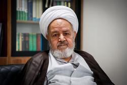 عدالت اجتماعی با مجلس و دولت انقلابی محقق میشود/ آمریکا در مواجهه با ایران ضربه گستردهای میخورد