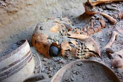 İran'da bulunan 5 bin yıllık maymun iskeleti görücüye çıkarıldı