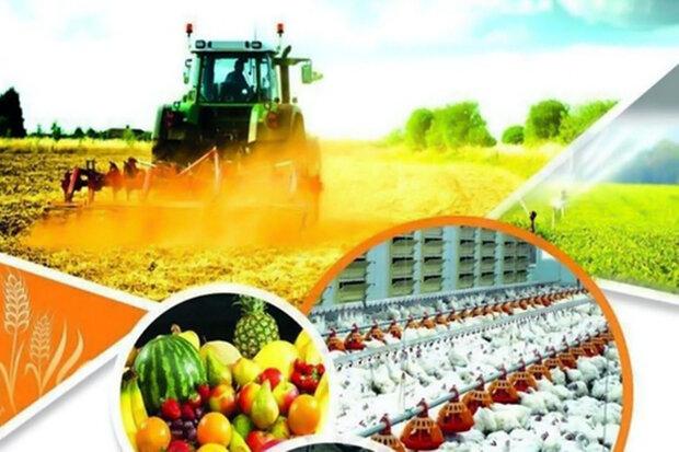 اعطای تسهیلات اشتغال روستایی به ۱۱۸۶ طرح کشاورزی و صنعتی در مرکزی