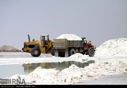 Salt harvesting; a way of survival for Lake Urmia