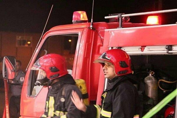 آتش سوزی گسترده درختان در بلوار ذغالسنگ کرمان