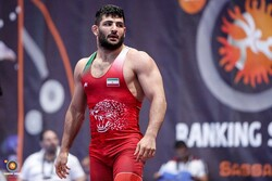 Iranian freestyle wrestlers gain 7 medals at Italy's Matteo Pellicone Memorial