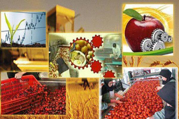 محصولات صنایع تبدیلی اردبیل باید صادرات محور باشند