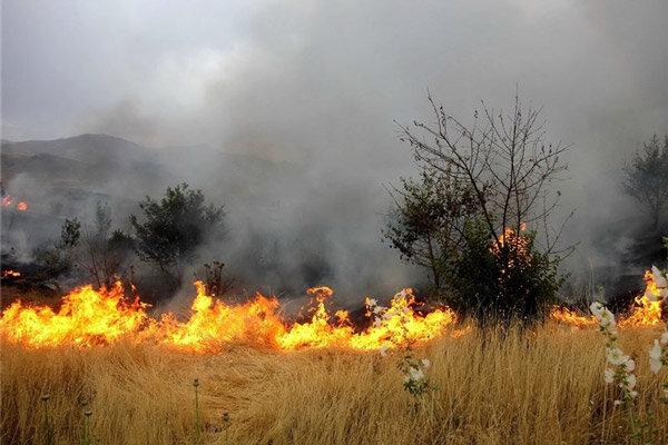 وقوع ۱۲ مورد حریق مراتع و پوشش گیاهی طی یک روز در همدان