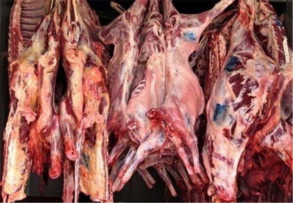 ۱۹۰ هزار تن گوشت قرمز سالانه توسط عشایر تولید میشود